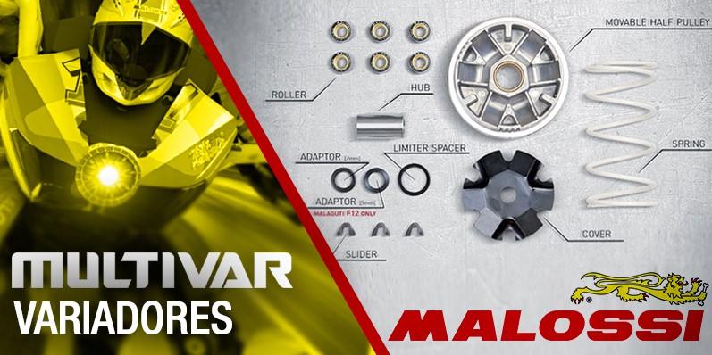 VARIADORES MALOSSI MULTIVAR