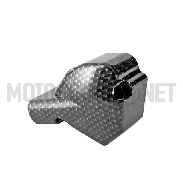 Tapa de Bomba de aceite TNT, Minarelli AM6, carbono