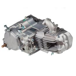 Motor completo Pitbike Daytona Anima 190FDX