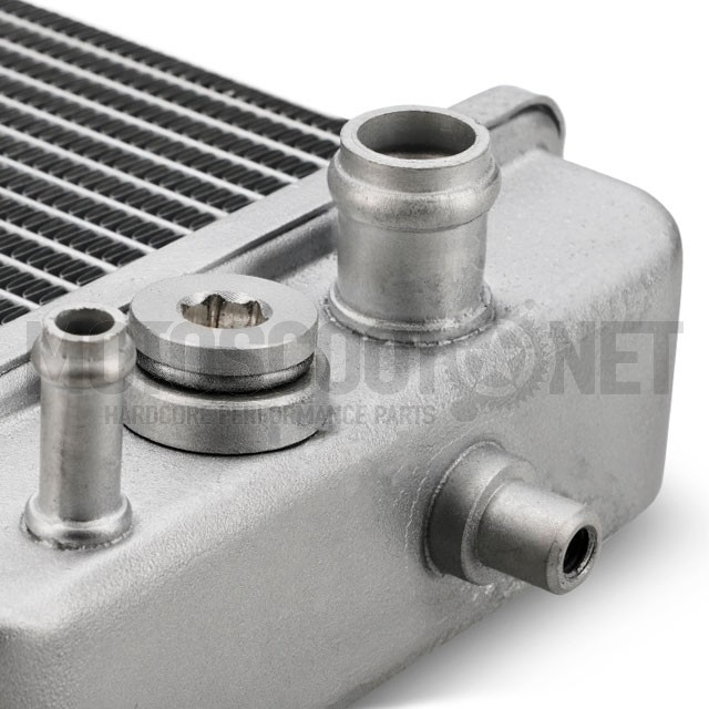 Derbi Senda 50cc Thermostat 00-05