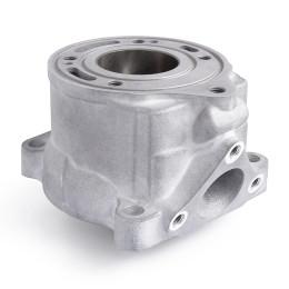 Cylinder KTM SX 50 09-17 Airsal