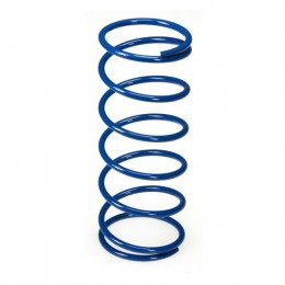 Clutch Springs Polini Maxiscooter Honda Foresight until 2005 / Kymco 250 until 2005